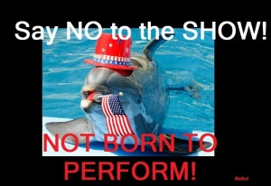 say no to the show